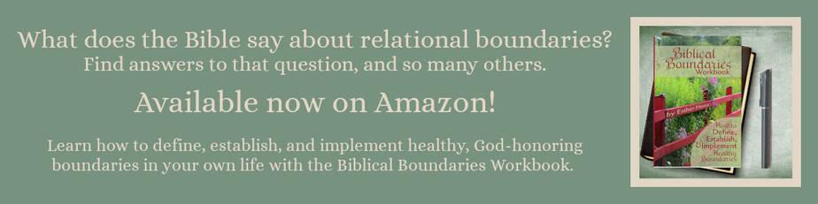 Biblical Boundaries Workbook on Amazon